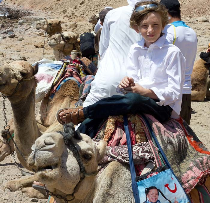Zac riding a camel to go diving in Egypt.