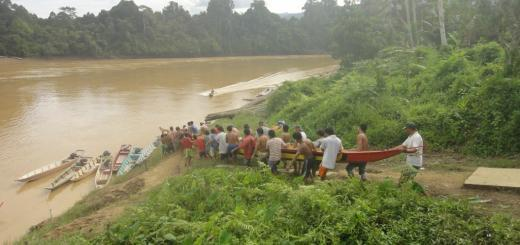 Men from the Kayan tribal minority of Borneo carry a 32-man war canoe down to the Balui River.