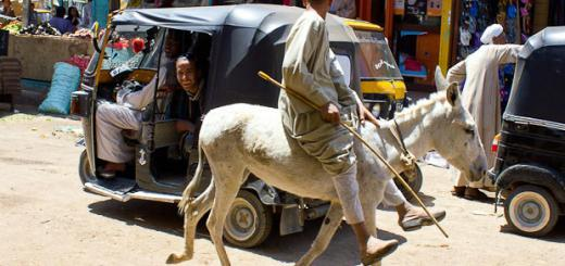 Young man on a donkey chats to a friend in a tuk-tuk: market day in small town Egypt.