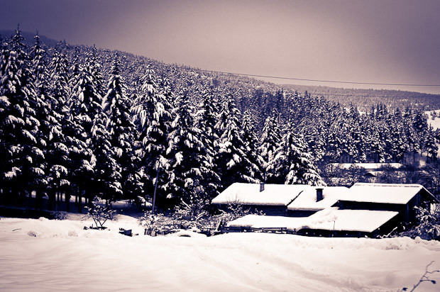 Snowcovered houses in a Balkan village, on the train from Bansko to Septemvri,