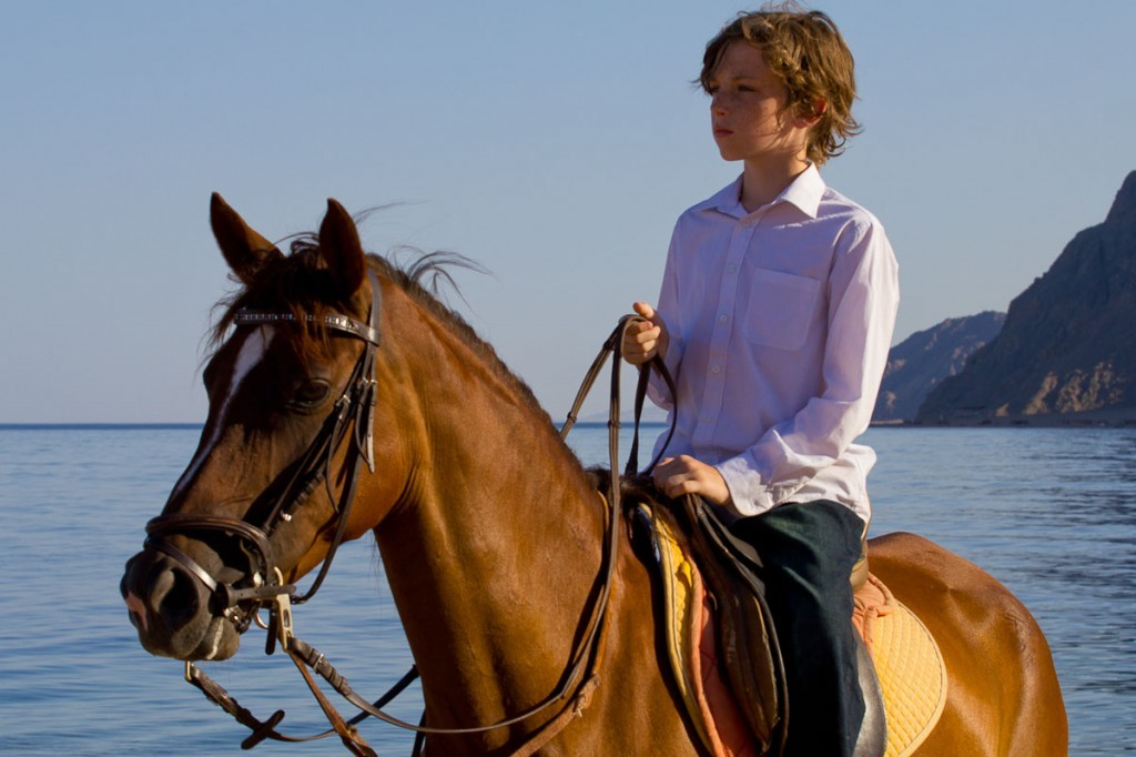 a horse without a rider essay