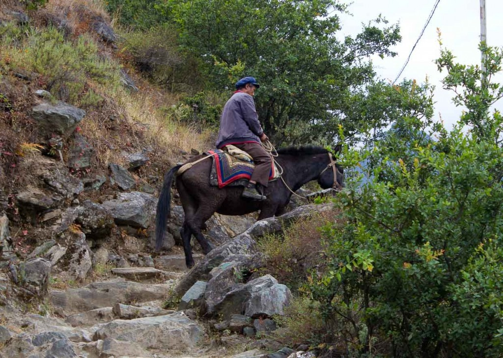 Muleteer on path in Tiger Leaping Gorge.