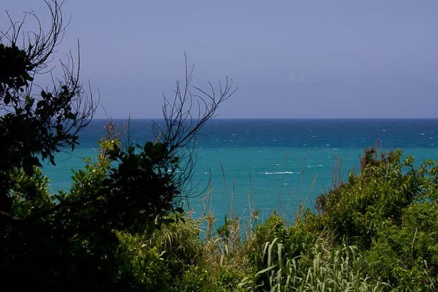 View of Mediterranean from Camping Les Colombes in Amchit, Lebanon.
