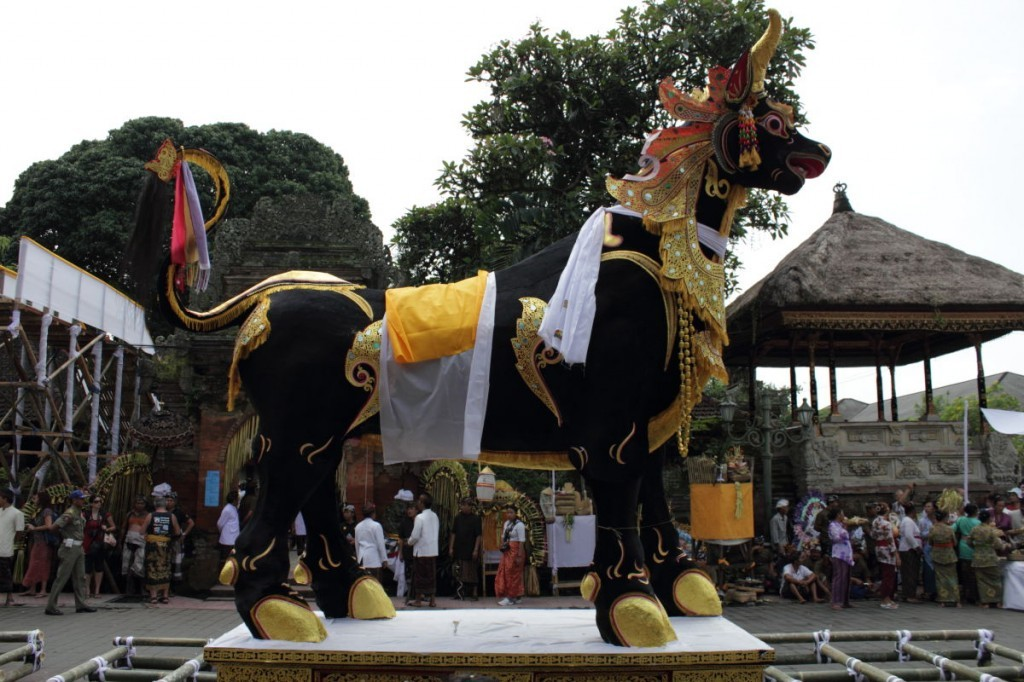 black bull sarcophagus with gilded tale, hooves and necklaces at a balinese funeral, ubud.