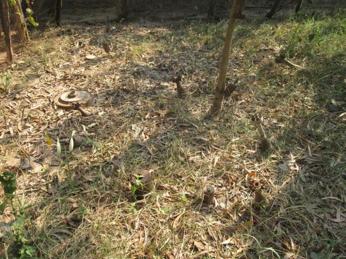 garden-at-landmine-museum-siem-reap-cambodia