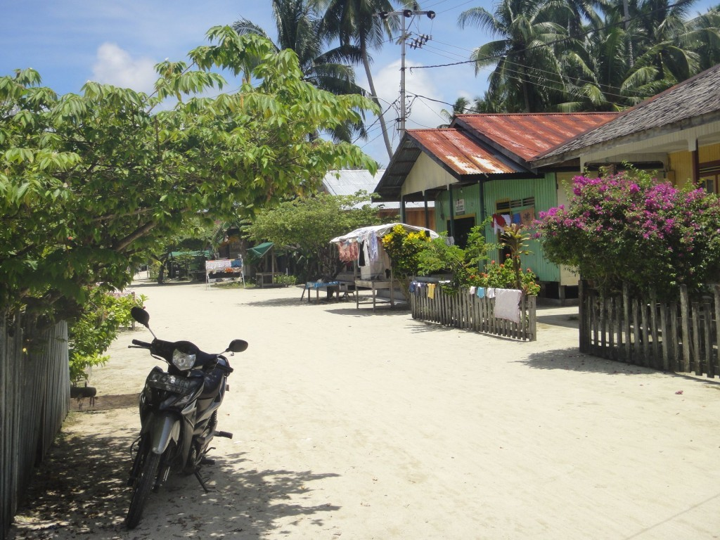 "The ""main street"" of Pulau Derawan, Indonesia."