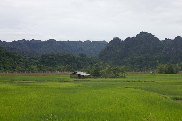 hut and karst and rice fields in rural Laos.