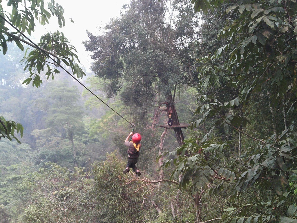 Z on canopy zipwire, Tad Sae Waterfall, Luang Prabang, Laos