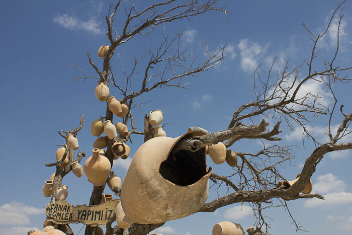 Pots in a bare tree, Cappadocia.