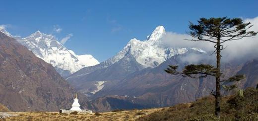 Tall juniper overshadows chorten with Ama Dablam in the background: Khumjung.