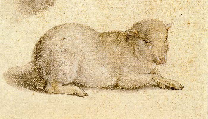 Detail of Hans Holbein the Younger's Resting Lamb and the Head of a Lamb, via Wikimedia Commons.