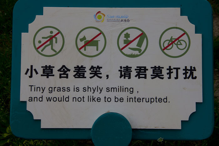 This grass is shly smiling and would not like to be interupted