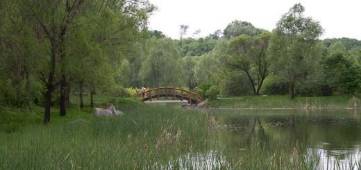 Jingyuetan Park Changchun