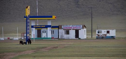 Petrol station, outer Mongolia, with goats and no road.
