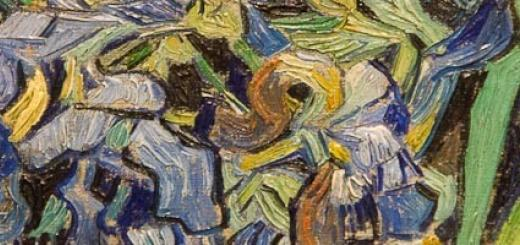 Detail of Van Gogh's Irises.