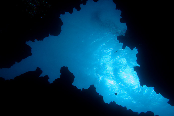 The Canyon dive site, Dahab.