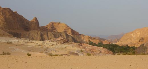 Ein Khodra Oasis, Sinai Desert.