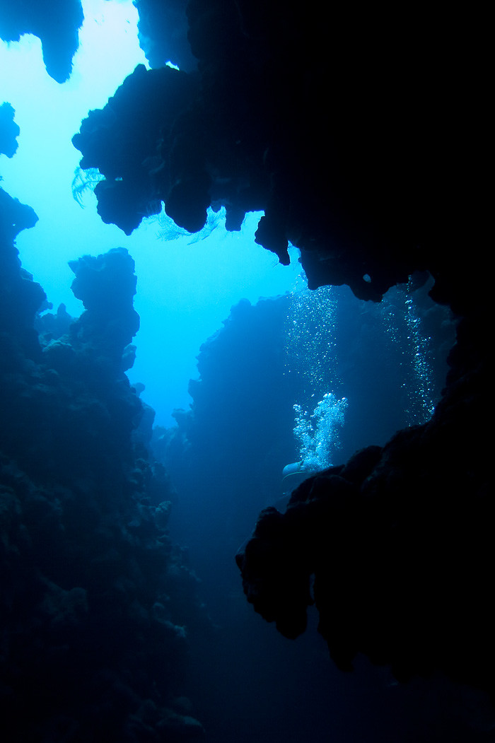 Diving Dahab - the nooks and crannies of Canyon.