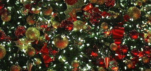 Christmas tree at the Bellagio, Las Vegas, by Scott Ellis.