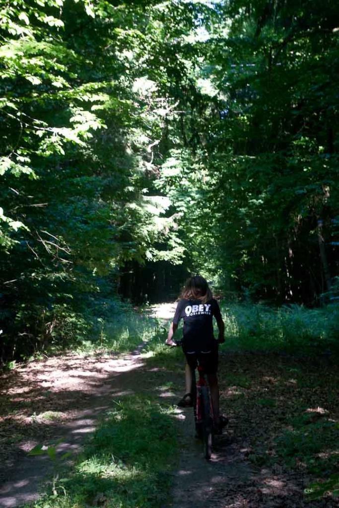 Cycling Bialowieza