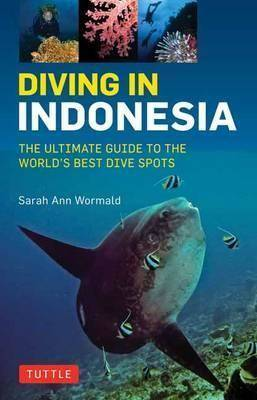Cover image of diving in Indonesia with giant sunfish