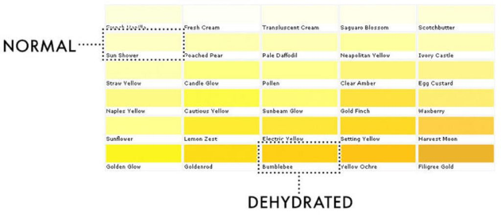 Colour chart to show whether you're dehydrated by the colour of your pee.